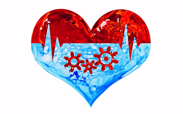 image of a cartoon heart with red top half, divided by EKG line with light blue bottom half containing image of gears.