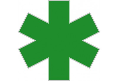 https://www.myidentitydoctor.com/image/cache/data/star-of-life-Green-400x275.jpg