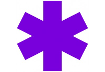 https://www.myidentitydoctor.com/image/cache/data/star-of-life-Purple-400x275.jpg